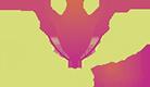Encactus Floral
